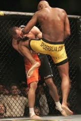 Anderson Silva landing a brutal knee to Rich Franklin