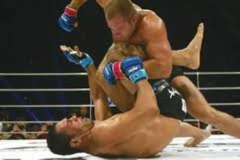 Fedor Emelianenko delivering vicious ground-and-pound