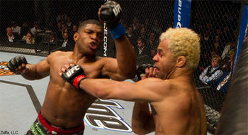 Daley_koscheck_big_381_display_image