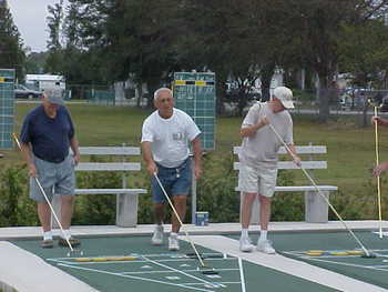 Shuffleboard_display_image