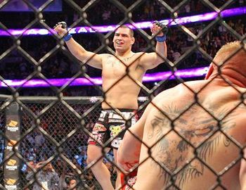 Brock-lesnar-vs-cain-velasquez_display_image