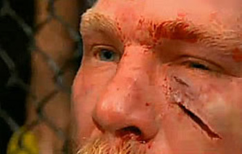 Brocklesnar_display_image_display_image