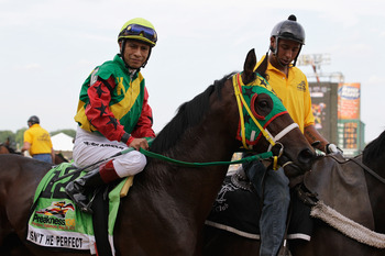 BALTIMORE, MD - MAY 21: Isn't He Perfect with jockey Ramon Dominguez #12 during the post parade for the 136th running of the Preakness Stakes at Pimlico Race Course on May 21, 2011 in Baltimore, Maryland.  (Photo by Rob Carr/Getty Images)