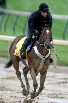 LOUISVILLE, KY - MAY 01: Santiva works out during the morning exercise session in preparation for the 137th Kentucky Derby at Churchill Downs on May 1, 2011 in Louisville, Kentucky.  (Photo by Matthew Stockman/Getty Images)