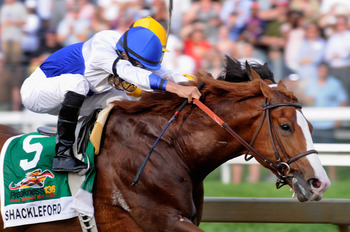 BALTIMORE, MD - MAY 21:  Jockey Jesus Castanon guides Shackleford #5 out of the fourth turn to win the 136th running of the Preakness Stakes at Pimlico Race Course on May 21, 2011 in Baltimore, Maryland.  (Photo by Rob Carr/Getty Images)