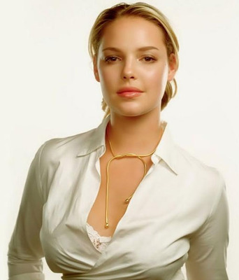 Katherine-heigl-hot-sexy_display_image