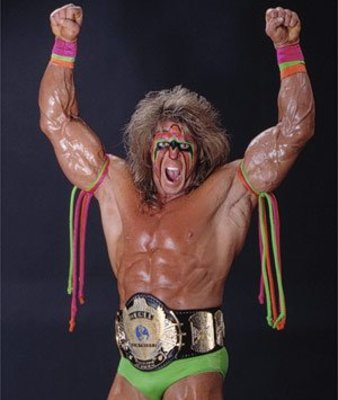 Ultimatewarrior2_display_image