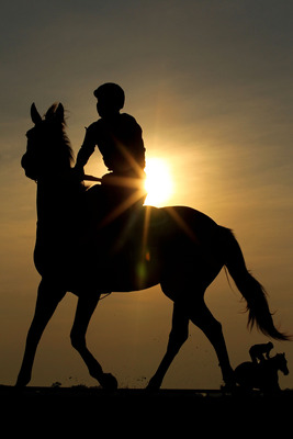 ELMONT, NY - JUNE 08:  A horse and rider work on the track during  a morning training session in preparation for The Belmont Stakes at Belmont Park on June 8, 2011 in Elmont, New York.  (Photo by Al Bello/Getty Images)