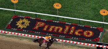 BALTIMORE, MD - MAY 21:  Jockey Jesus Castanon guides Shackleford #5 to victory over Animal Kingdom and jocky John Velazquez #11  and Astrology with jockey Mike Smith #1 to win the 136th running of the Preakness Stakes at Pimlico Race Course on May 21, 20