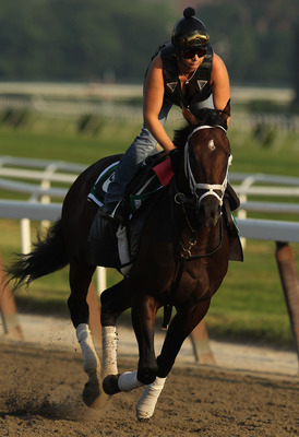 ELMONT, NY - JUNE 08:  Stay Thirsty runs during the morning exercise session in preparation for The Belmont Stakes at Belmont Park on June 8, 2011 in Elmont, New York.  (Photo by Al Bello/Getty Images)