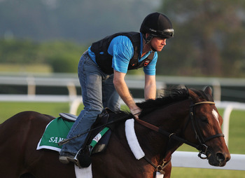 ELMONT, NY - JUNE 09:  Santiva, ridden by Brendan Walsh, runs on the track during a morning training session in preparation for The Belmont Stakes at Belmont Park on June 9, 2011 in Elmont, New York.  (Photo by Al Bello/Getty Images)