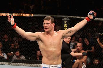 Bisping_display_image