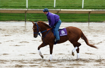 ARLINGTON HEIGHTS, IL - OCTOBER 25:  Extremely wet and sloppy conditions on the track greet Thunderello, a horse entered in the Napa Breeders' Cup Sprint race at Arlington Park during early morning workouts for the 2002 Breeders' Cup World Thoroughbred Ch