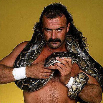 Jake-the-snake-roberts_display_image