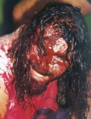 Mick_foley_display_image
