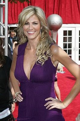 Erin-andrews-purple-dress_display_image