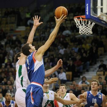 Bojan-bogdanovic-cibona_display_image