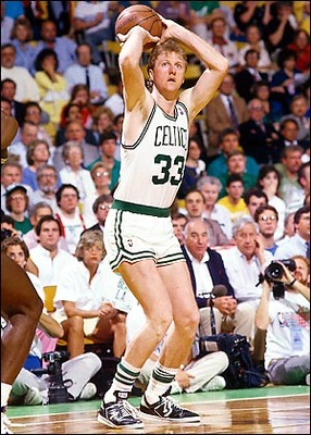 Larrybird_display_image