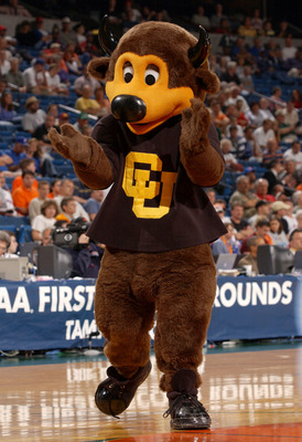 TAMPA - MARCH 21:  The mascot for the University of Colorado Buffaloes cheers for his team against of the Michigan State Spartans as the Spartans defeated the Buffaloes 79-64 in the first round of the South Region of the 2003 NCAA Division I Men's Basketb