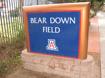 Ariz_bear_down_field_display_image