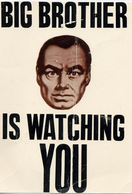Big-brother-poster_display_image