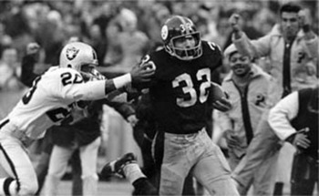 Immaculate_reception_display_image