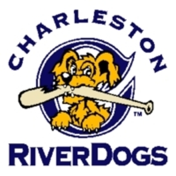 Charleston_riverdogs_display_image