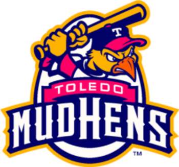 Toledomudhens_display_image