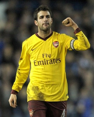 Fabregas_display_image