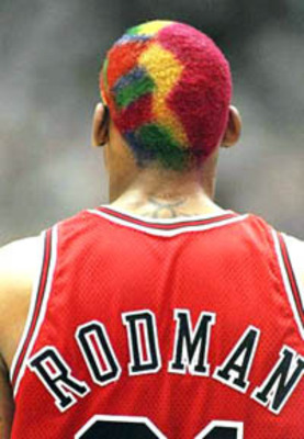 Rodman2_display_image
