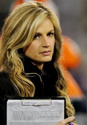Erin-andrews-f43053e86f7daa5c_medium_display_image