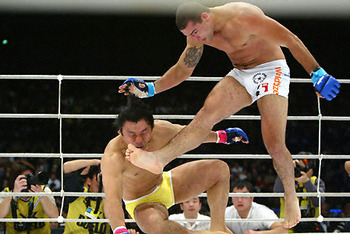 Shogunrua_display_image