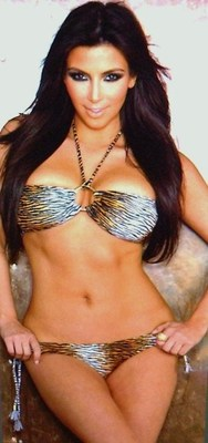 Kim_kardashian_bikini_photo1_display_image