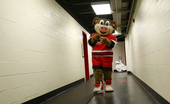 RALEIGH, NC - NOVEMBER 19: The Carolina Hurricanes mascot Stormy heads out for the game between the Hurricanes and the Toronto Maple Leafs at the RBC Center on November 19, 2009 in Raleigh, North Carolina. (Photo by Bruce Bennett/Getty Images)