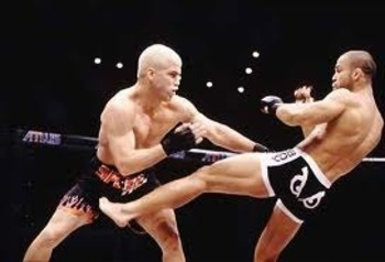 Tito Ortiz defeated Wanderlei Silva to win his first LHW championship