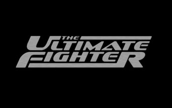 The_ultimate_fighter_metal_by_techii_display_image