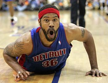 Rasheed_wallace_display_image