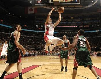 Bargnani_display_image