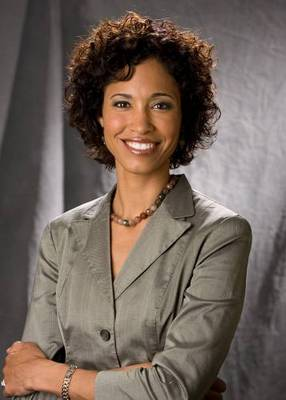 Sagesteele_display_image