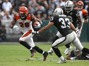 OAKLAND, CA - NOVEMBER 22: Bernard Scott #28 of the Cincinnati Bengals runs against Tyvon Branch #33 of the Oakland Raiders during an NFL game at Oakland-Alameda County Coliseum on November 22, 2009 in Oakland, California.  (Photo by Jed Jacobsohn/Getty I