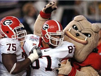 Dawgs1_display_image