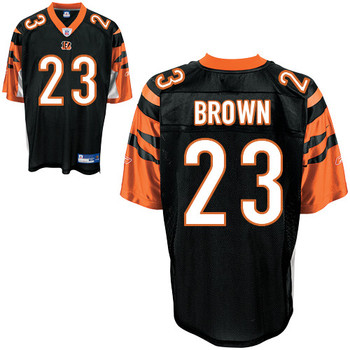 Brownbengals_display_image