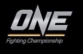 Onefc_display_image