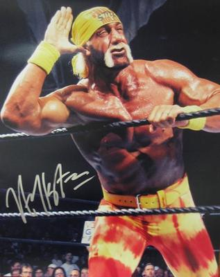 Hulk-hogan-listen_display_image