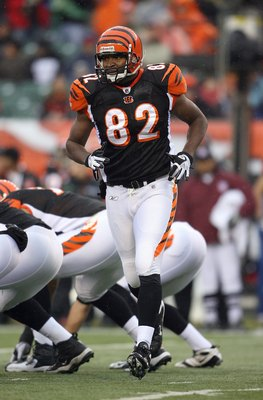 CINCINNATI - NOVEMBER 30:  Reggie Kelly #82 of the Cincinnati Bengals goes into motion prior to the snap of the ball during their NFL game against the Baltimore Ravens on November 30, 2008 at Paul Brown Stadium in Cincinnati, Ohio. The Ravens defeated the