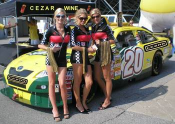 Cezar_girls_nascar_poster_display_image