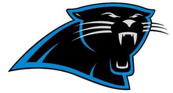 Carolinapanthers_display_image