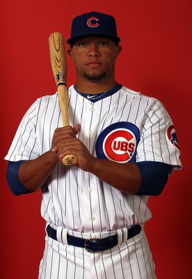 MESA, AZ - MARCH 01:  Welington Castillo of the Chicago Cubs poses for a photo during Spring Training Media Photo Day at Fitch Park on March 1, 2010 in Mesa, Arizona.  (Photo by Ronald Martinez/Getty Images)