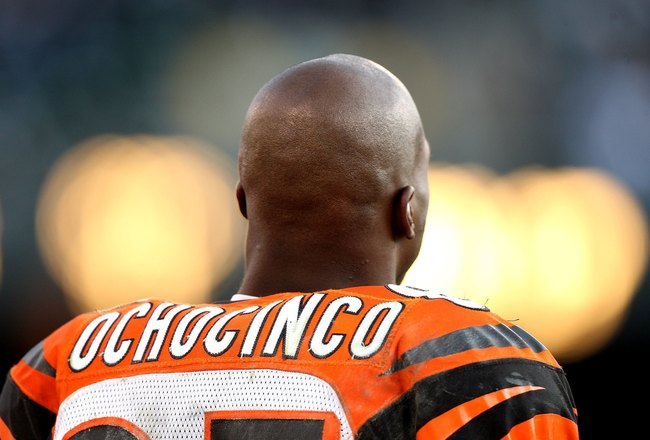 OAKLAND, CA - NOVEMBER 22:  Chad Ochocinco #85 of the Cincinnati Bengals looks against the Oakland Raiders during an NFL game at Oakland-Alameda County Coliseum on November 22, 2009 in Oakland, California.  (Photo by Jed Jacobsohn/Getty Images)