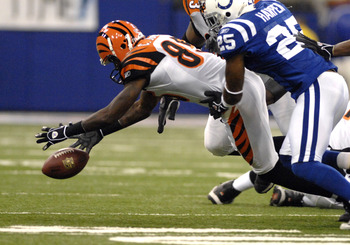 Cincinnati Bengals wide receiver Chad Johnson recovers a fumble by  running back Rudi Johnson  against the Indianapolis Colts Dec. 18, 2006 in the RCA Dome in Indianapolis.  (Photo by Al Messerschmidt/Getty Images)